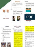Leaflet Akses Vaskuler