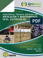 asistencia tecnica dirigida en instalacion y mantenimiento en el cultivo de vid.pdf