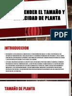 Comprender El Tamaño y Capacidad de Planta