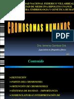 Cromosomas Unfv 2017 PDF