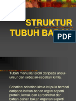 1.Struktur Tubuh Badan