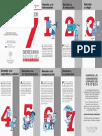 Poliptico 7 Derechos 2016 TRIPTICOS PDFs Sin Marcas de Corte