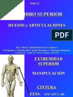 4.1 Miembro Superior Huesos y Articulaciones (1).ppt