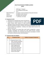 RPP IPS 8 - 2