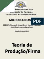Teoria de Produção e Firma