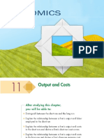 192871157-Outputs-and-Costs.ppt
