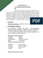 PRACTICA 1_ FLOTACION NO SULFUROS.doc
