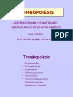 Trombopoiesis .ppt