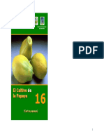 Papaya,-2005.pdf