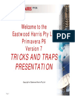 100602_P6V_ Bars_Tricks_and_Traps.pdf