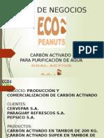 COAL ACTIVE S.A.