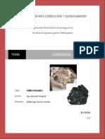 carbonos q. inorg.docx