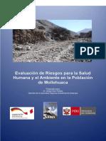 ERSA Mollehuaca.pdf