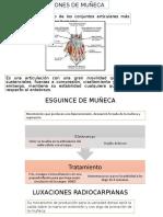 Lesiones de Muñeca
