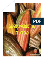 Presentacion Cadena de Cacao 2011