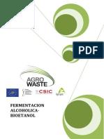 FERMENTACION-ALCOHOLICA.pdf