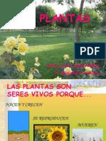 Las Plantasxs