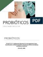 Aula 6. Probióticos em alimentos.pdf