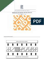 58785123-deshidratacin-con-teg-150429020023-conversion-gate01.pdf
