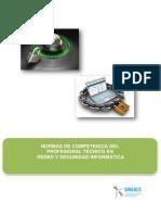 Anexo Resol. N°330-2017-REDES Y SEGURIDAD INFORMATICA.pdf