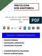 1- Anatomia Ginecologica
