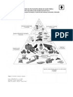Pirâmide alimentar.pdf