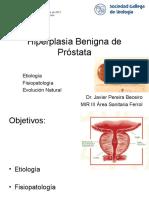 Prostata 2