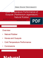 Cold Temperature Performance of Guayule
