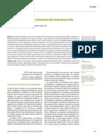 Bases-genéticas-de-los-trastornos-del-neurodesarrollo-1