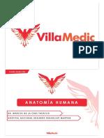 Anatomia Humana Parte 3 y 4