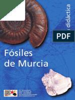 guiadidacfosmur.pdf