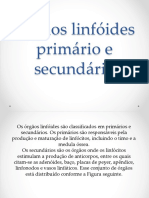 Órgãos Linfóides Primário e Secundário 2017