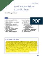 420-2014-03-20-13 Lesiones sistema nervioso periferico.pdf