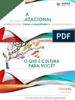 Aula - Cultura Organizacional