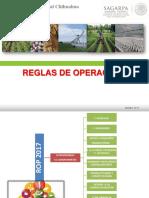 Reglas de Operación 2017
