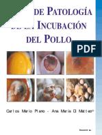 atlas-de-patologias-de-la-incubacion.pdf