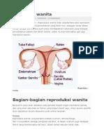 eproduksi wanita.docx
