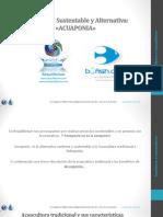 acuaponia.pdf