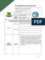 Formato de Practicas de Investigación y Laboratorio