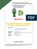 Proyecto de La Goma