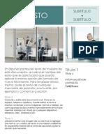 Documento (42).docx