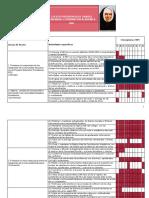 plandeaccion COORDINACION ACADÉMICA Providencia 2009.pdf