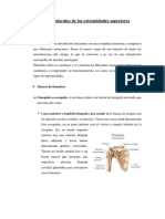 Huesos y músculos de las extremidades superiores.docx