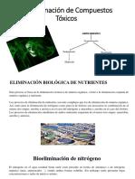 Bioeliminación de Compuestos Tóxicos 2P.pdf
