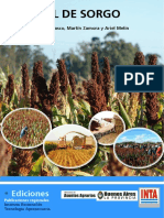 Inta Manual de Sorgo Renglon 191