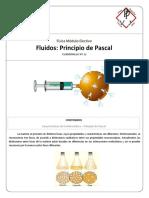 FE11 - Principio de Pascal