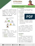 Apostila Citoplasma Mitocondria e Cloroplasto