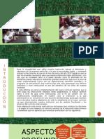 aspectos a profundizar de la nueva currícula nacional opinión de la I.E. 11516 Tumán