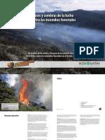 Luces y Sombras de la Lucha contra los Incendios Forestales