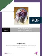 Memoria del Practicum de Neuropsicología Clínica_Juan Ignacio Junco